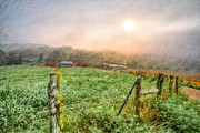 Sunset Greeting Cards Posters - Frosty Morn Poster by Debra and Dave Vanderlaan