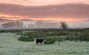 Langdale Prints - Frosty Morning In The Valley Print by Brian Kerr Photography