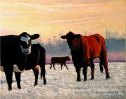 Heifers Posters - Frosty Reception Poster by Doug Strickland