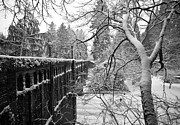 Ice Metal Prints - Frozen Bridge Metal Print by Mike Reid