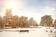 United Kingdom Greeting Cards Posters - Frozen Coronation Park Lake Poster by Liam Liberty