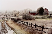Ice Storm Photos - Frozen Farm by Ken Marsh