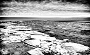 Frozen Beach Shore Prints - Frozen LBI Print by John Rizzuto