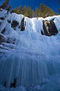 Alberta Water Falls Prints - Frozen Lower Falls In Johnston Canyon Print by Zoltan Kenwell