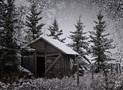 Vintage Greeting Cards Prints - Frozen Shed Print by Larysa Luciw