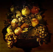 Grape Vine Photo Originals - Fruit Basket by Bombaert Patrick