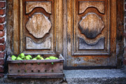 Stoop Framed Prints - Fruit delivery Framed Print by Joan Carroll