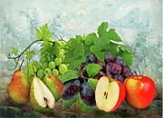 Grapes Art Prints - Fruit Garden Print by Manfred Lutzius