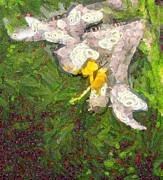 Fruit Lily Print by Odon Czintos