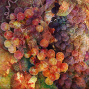 Grapes Digital Art Prints - Fruit of the Vine Print by Barbara Berney