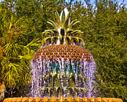 Al Powell Photography Usa Framed Prints - Fruity Fountain Framed Print by Al Powell Photography USA