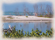 Painted Mixed Media - Ft. Myers Beach Lagoon by Rosalie Scanlon