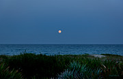 Florida East Coast Framed Prints - Full Flower Moon Rising Framed Print by Michelle Wiarda