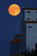 Night Scenes Digital Art Framed Prints - Full moon behind Tuxford grain elevator Framed Print by Mark Duffy