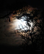 Moonlit Night Photos - Full Moon Halo Effect by Kerri Ligatich