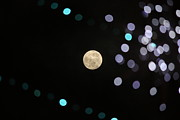 Defocused Prints - Full Moon In Sky Print by Taitetsu