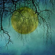 Nature Scene Prints - Full Moon Print by Jill Ferry