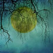 Full Moon Print by Jill Ferry