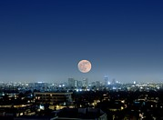 Moon Rise Posters - Full Moon Over Beverly Hills, Usa Poster by Detlev Van Ravenswaay