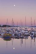 Bc Coast Photos - Full Moon Over Ganges Harbor by Rob Tilley