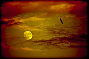 Full Moon Red Sky Print by Marc Garrido
