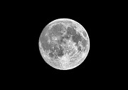 Moon Surface Prints - Full Moon Print by Richard Newstead