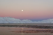 Moonlit Art - Full Moon, South Georgia by Charlotte Main
