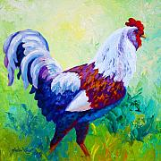 Farm Rooster Painting Framed Prints - Full Of Himself - Rooster Framed Print by Marion Rose