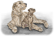 Puppy Drawings Framed Prints - Full of Promise - Irish Wolfhound Dog Print color tinted Framed Print by Kelli Swan