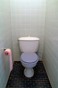 Domestic Bathroom Posters - Full roll of pink toilet paper in the bathroom Poster by Sami Sarkis