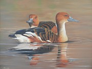 Ducks Paintings - Fulvous Whistling Ducks by Lorraine Kilmer
