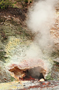 Vale Photos - Fumarole in Furnas Valley by Gaspar Avila
