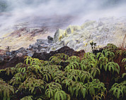 Hawai Prints - Fumarole Vents Print by G. Brad Lewis