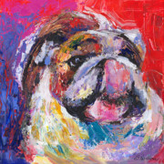 Impressionistic Dog Art Drawings - Funny Bulldog licking his hose painting by Svetlana Novikova