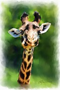 Zoo Animals Paintings - Funny Giraffe by Michael Greenaway