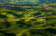 Rolling Hills Prints - Furrows and Folds Print by Mike  Dawson