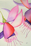 Fuschia Prints - Fuschia II Print by Elise Boam