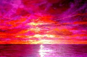 Marie-Line Vasseur - Fushia Sunset