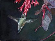 Byzantine Mixed Media - Fushias and Hummingbird by Lori  Presthus