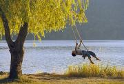 Tree Swings Posters - Fv3583, Natural Moments Photography Boy Poster by Darwin Wiggett