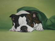 Boston Terrior Prints - Gabby Print by Jennifer Batey