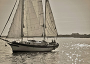 Yacht Photo Originals - Gaff Rigged Ketch Cutter Sailing the Charleston Harbor by Dustin K Ryan