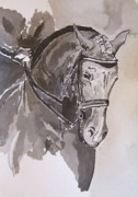Dressage Drawings - Gainsborough Donner Bella  by Adrian McMillan