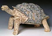 Turtle Ceramics - Galapagos Tortoise by Patrick Johnson