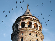 Flock Of Bird Art - Galata Tower Surrounded By Birds At Sunset by Gary Yeowell