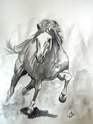 Temperament Drawings Prints - Galloping Horse Print by Ursula  Thuleweit Laranjeiro