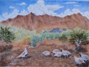 Grande Paintings - Gambel Quail by Ken McBride