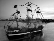 Tampa Bay Florida Prints - Gang of Pirates Print by David Lee Thompson