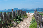 Sea Grass Metal Prints - Ganivelles (fences) And Pathway To The Beach Metal Print by Alexandre Fundone