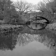 Black And White Framed Prints - Gapstow Bridge - Central Park - New York City Framed Print by Holden Richards